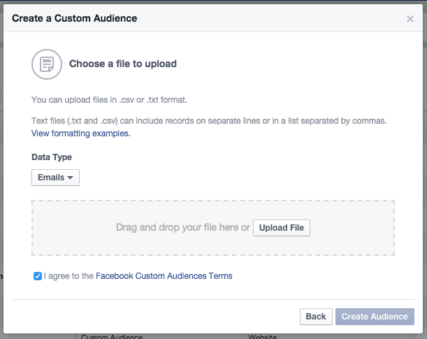 Facebook Ads - Upload Custom Audience